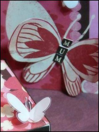 04-butterflies
